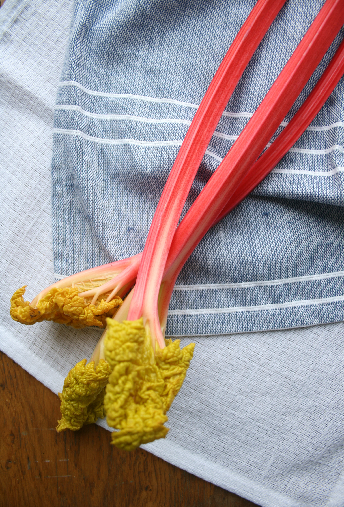 Rhubarb and Custard Tartlets - an uncomplicated dessert for a little indulgent treat | eatloveeats.com