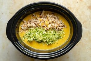 shredded chicken and grated zucchini on top of the soup